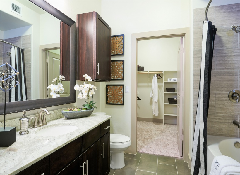 View of Bathroom, Showing Granite Countertop, Single Vanity, View of Closet at 3800 Main Apartments