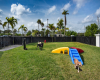 View of Cottonwood West Palm's Dog Park, Showing Three Dogs Playing in the Park with Dog Playground Equipment.