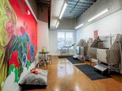 Melrose Apartments Pet washing Station