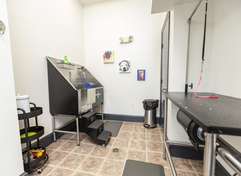 View of Bluffs at Vista Ridge Apartments Pet Spa Showing Pet Cleaning Stations.