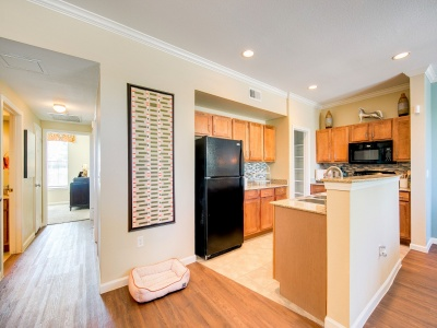 Enclave on Golden Triangle apartment kitchen